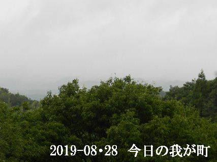 2019-08・28 今日の我が町.JPG