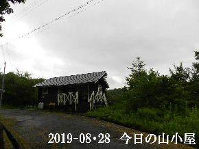 2019-08・28 今日の里山模様・・・ (2).JPG