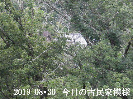 2019-08・30 今日の古民家模様.JPG