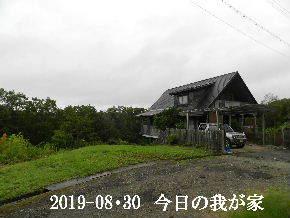2019-08・30 今日の里山模様・・・ (1).JPG