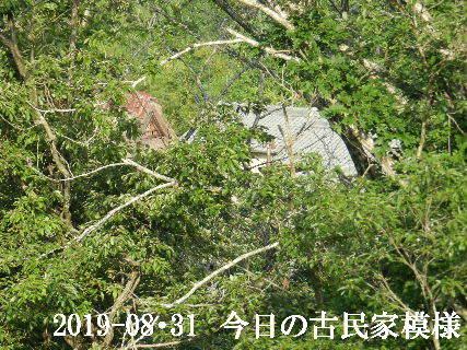 2019-08・31 今日の古民家模様.JPG