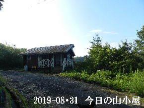 2019-08・31 今日の里山模様・・・ (2).JPG