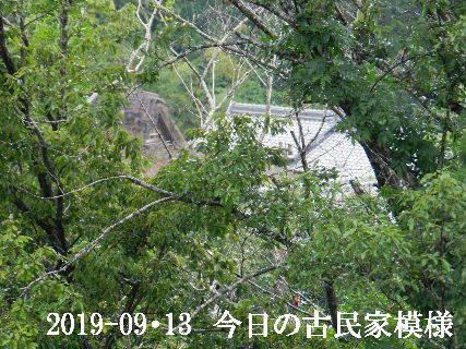 2019-09・13 今日の古民家模様.JPG