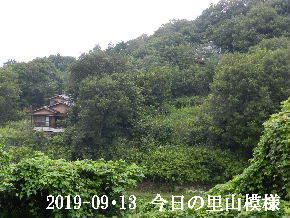 2019-09・13 今日の里山模様・・・ (5).JPG
