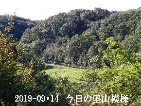 2019-09・14 今日の里山模様・・・ (4).JPG