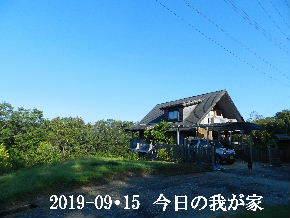 2019-09・15 今日の里山模様・・・ (1).JPG