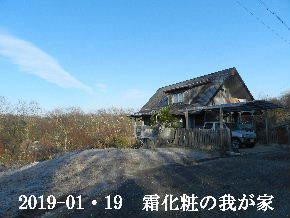 2019-0・19 今日の里山は・・・ (1).JPG