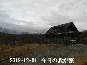 258-12・31 今日の里山は・・・ (1).JPG