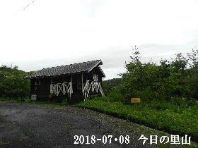 ⅱ018-07・08 今日の里山は・・・ (2).JPG